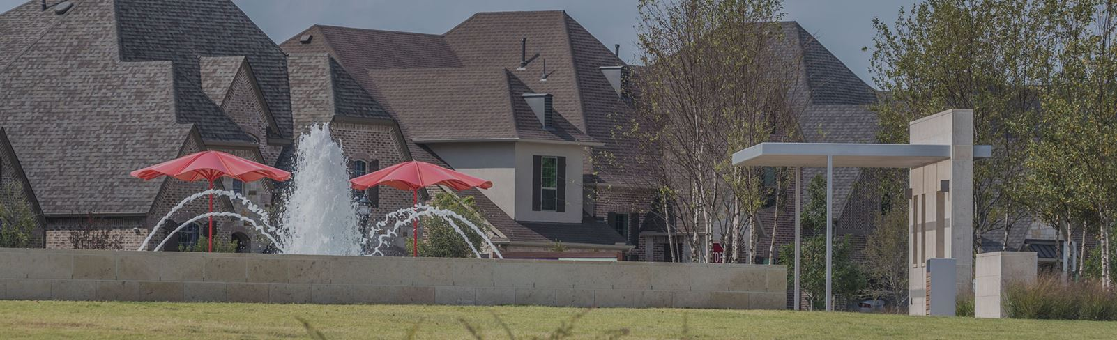 New Homes in Frisco Texas at Hollyhock community