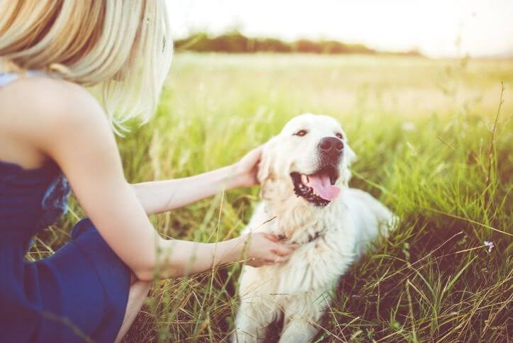 Young woman with her golden retriever | Hollyhock in Frisco, TX